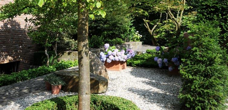 Ambiente gartengestaltung in m nster buchs und kies in for Gartengestaltung mit buchs und hortensien