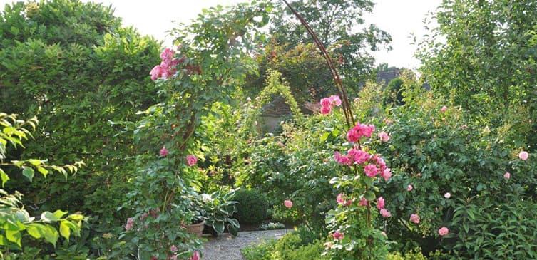 ambiente gartengestaltung in münster – kleiner stadtgarten auf 60, Garten ideen